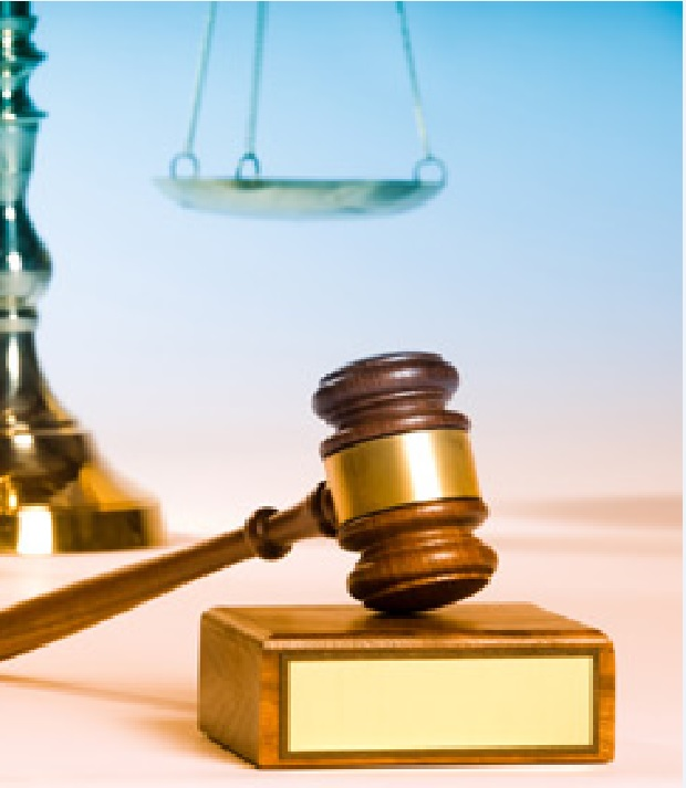 Focus on Law